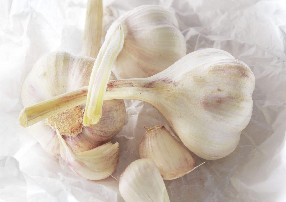 Garlic-Gathering